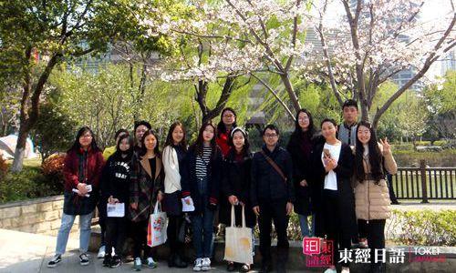 东经日语赏樱花活动课-苏州日语-苏州日语学校