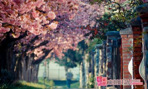 苏州日语培训班-日本留学院校-苏州日语