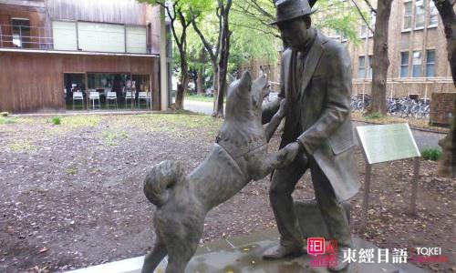 东京大学农学资料馆-苏州日语