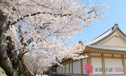 日本留学语言培训学校-苏州日语