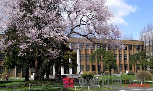 日本留学常见问题