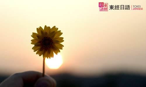 花朵-苏州日语-苏州日语培训班