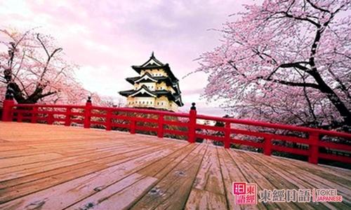 日本樱花-日本文化概论-培训日语