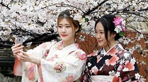 日本的成人礼活动流程及相关习俗介绍