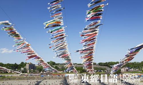 相模川鲤鱼旗会-日本文化祭