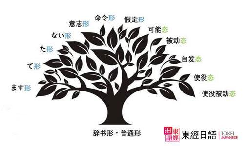 日语动词变形分类-苏州日语-苏州日语学习