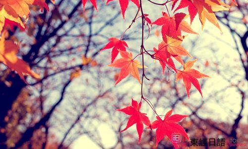 季节日语词汇-苏州日语-苏州新区日语培训