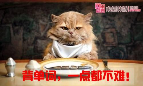 日语单词背诵技巧-日语词汇