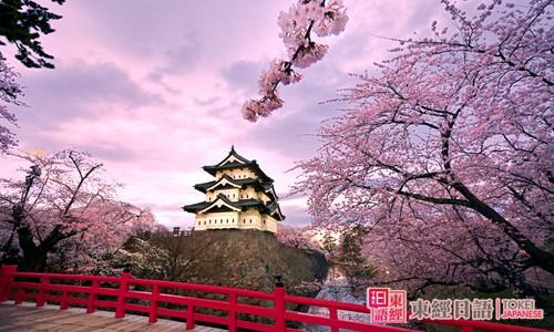 樱花-樱花的日文说法-樱花的日语说法