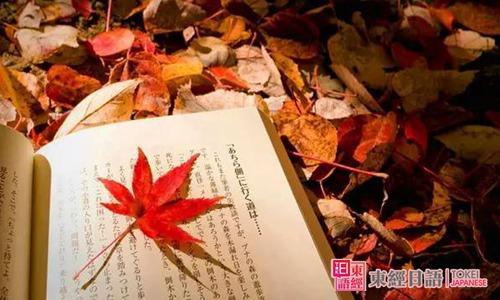 日本的秋天-日语秋季词汇-苏州日语培训