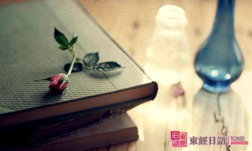 书本唯美-日语词汇辨析-苏州日语学校