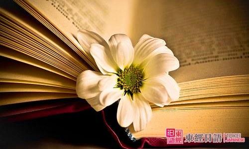 书本唯美-日语词汇辨析-苏州日语学习