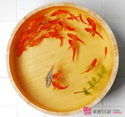 日本美术家深堀隆介-树脂金鱼