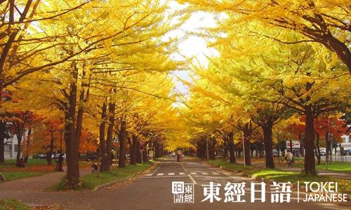 唯美风景-唯美日语句子