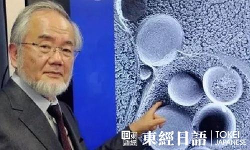 日本诺贝尔奖获得者大隅良典