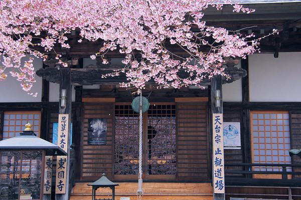 必看!日语助词「に」的14种用法总结!